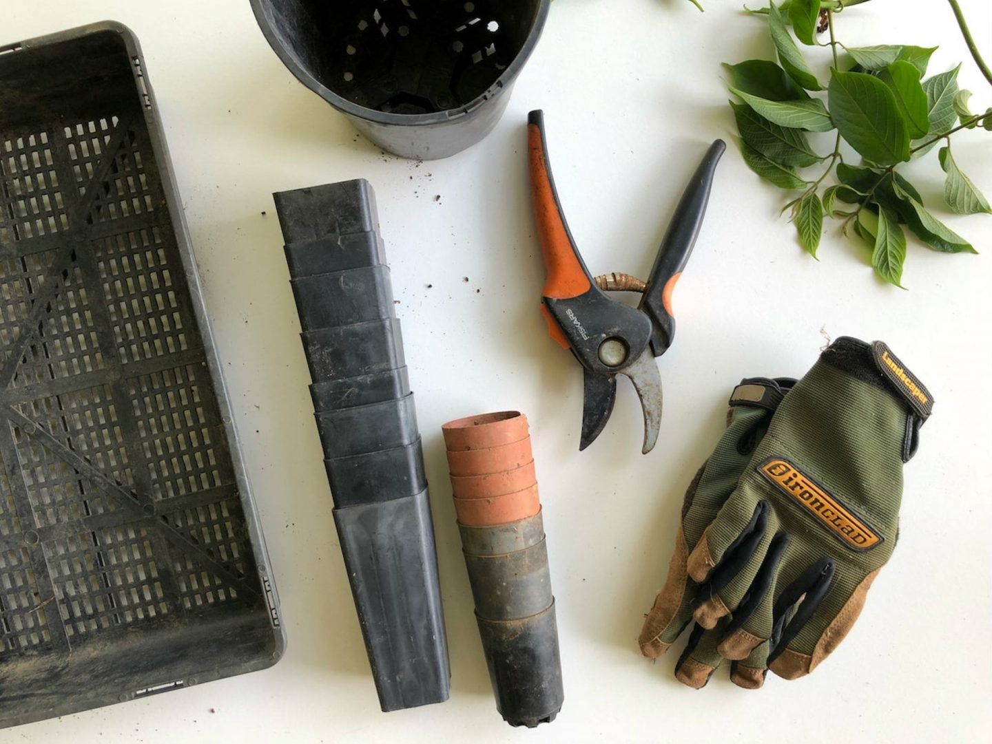 25 Last minute, Low Waste Father's Day Gifts